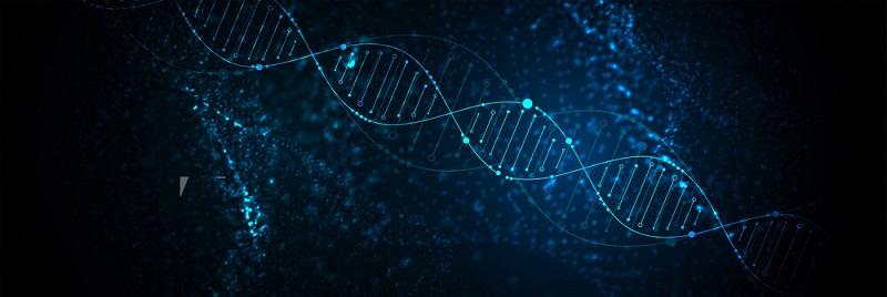 بیولوژی بدن انسان بسیار شگفت انگیز است