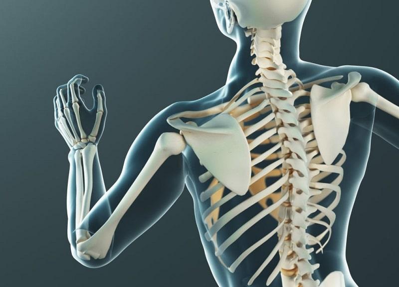 ساختمان استخوان - تشکیل استخوان از ذرات متبلور کلسیم و فسفر