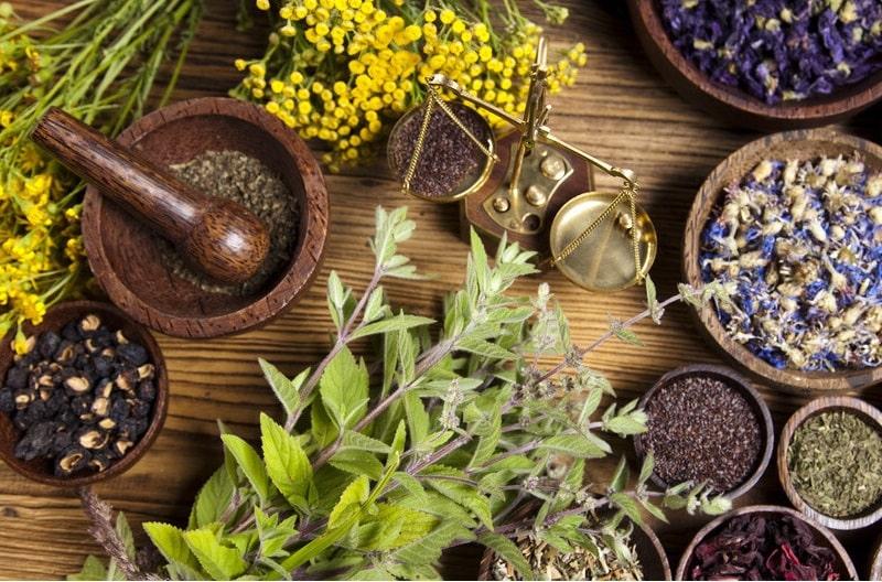 درمان ناهنجاری در اندازه پستان از نظر طب گیاهی