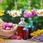 رعایت نکات فنی در بهره برداری از گیاهان دارویی