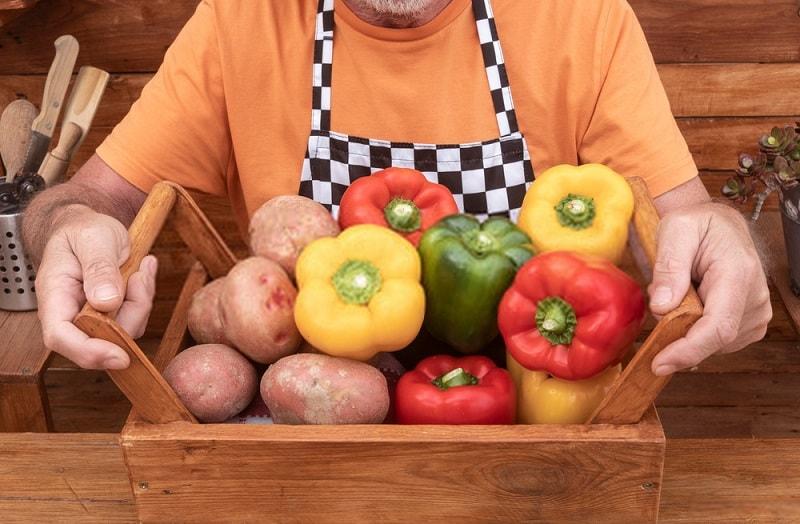 غذای بشر چیست؟