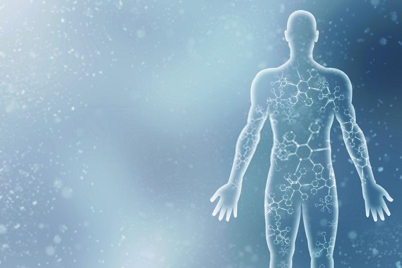بیولوژی بدن شما همانندبیولوژی بدن انسان غارنشین است