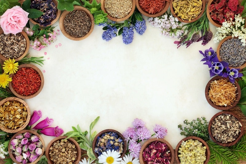 درمان تشنج در مزاج های مختلف با گیاهان دارویی