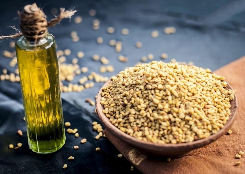 جلوگیری از لاغر شدن مبتلایان به مرض قند و سل، با دانه شنبلیله