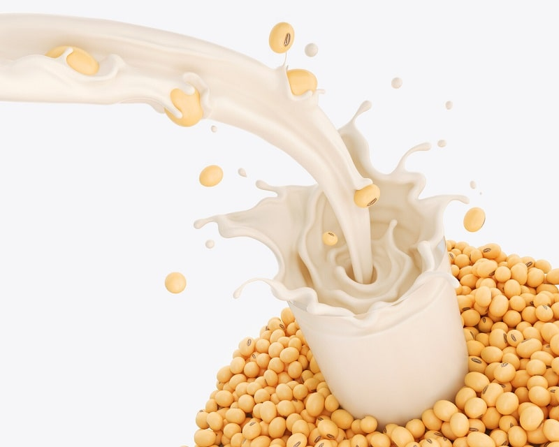 طرز تهیه شیر سویا در خام گیاه خواری