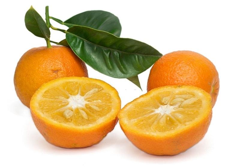 خواص درمانی درخت نارنج