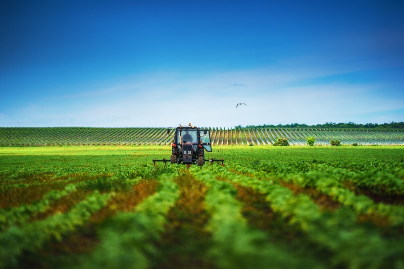 تاثیرات گرده افشانی بر زودتر بسته شدن گل ها و جلوگیری از سرمازدگی در کشاورزی