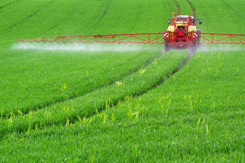 تاثیرات گرده افشانی بر میزان آب مصرفی کشاورزی