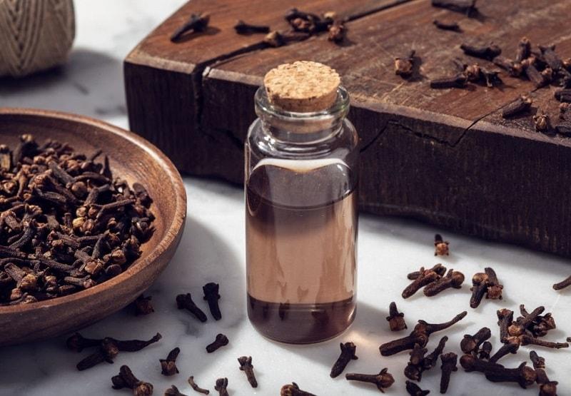 اسانس رقیق شده میخک را بهترین محلول ضد عفونی کننده
